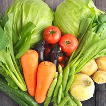 野菜の花言葉