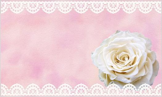 白いバラとレースのカード・文字なし