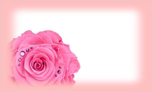 大きなピンクのバラ・文字なし