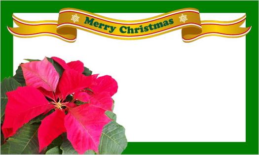 クリスマスカード・ポインセチアとリボンのMerry Christmas