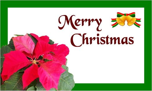 クリスマスカード・ポインセチアとMerry Christmas